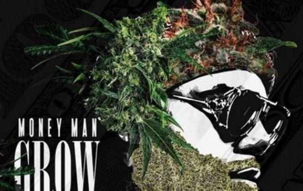 "Money Man Is Dubbed ""Grow God"" On Latest Mixtape"