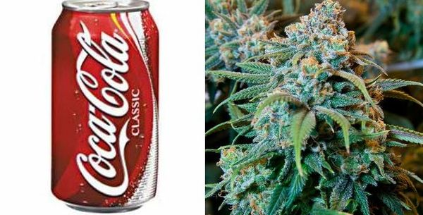Coke Is Getting Into Weed