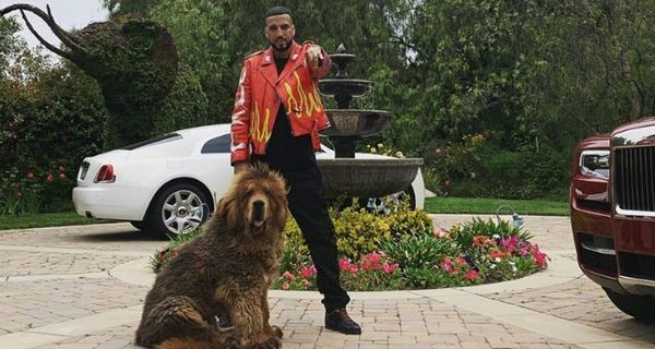French Montana Just Got A Giant Fluffy Dog